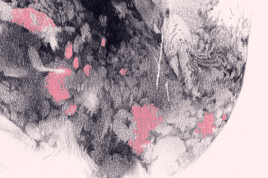 opale-focus-1